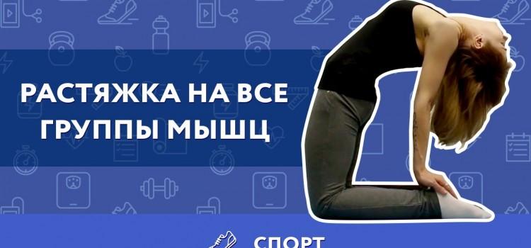 Самые эффективные упражнения для растяжки мышц
